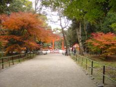 shikatasan2.jpg